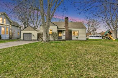 Canfield Single Family Home For Sale: 220 Fairview Ave