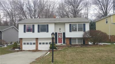 Garfield Heights Single Family Home For Sale: 6460 Kimberly Dr