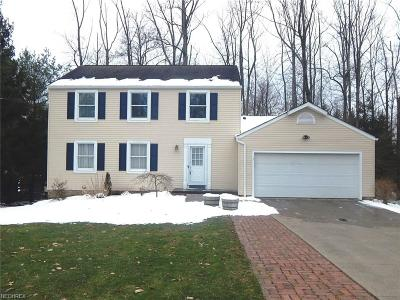 Summit County Single Family Home For Sale: 1128 Riverview Dr