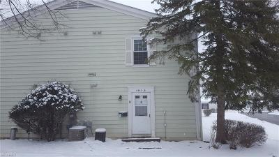 Lake County Condo/Townhouse For Sale: 8912 Trotter Ln #B