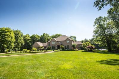 Kent Single Family Home For Sale: 7472 Ferguson Rd