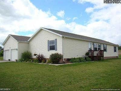 Geauga County Single Family Home For Sale: 750 Lawnview