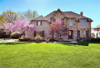 Westlake Single Family Home For Sale: 2322 Silveridge Trl