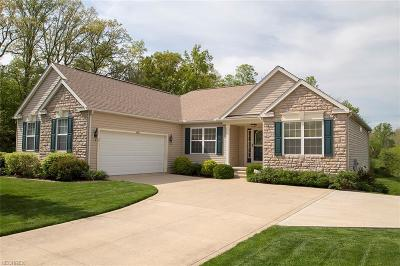 Medina Single Family Home For Sale: 4086 Turnberry Dr