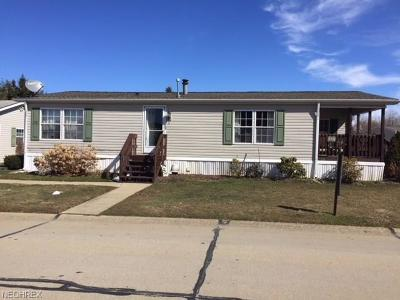 Painesville Township Single Family Home For Sale: 370 Golfway