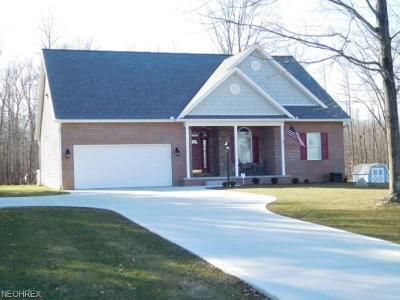 Single Family Home For Sale: 9678 Stratton Road