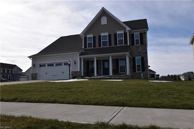Brunswick Single Family Home For Sale: 3100 Briarcliff Dr