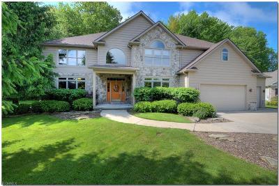 Solon Single Family Home For Sale: 6785 Ridgecliff Dr