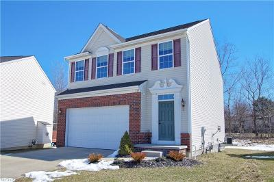 Richmond Heights Single Family Home For Sale: 489 Seneca Trl South