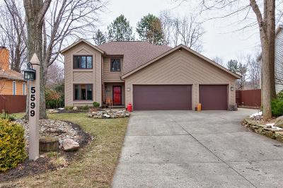 Mentor Single Family Home For Sale: 5599 Cardinal Dr