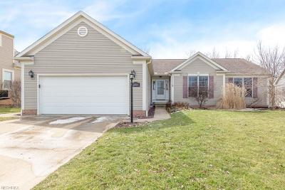 Ravenna Single Family Home For Sale: 2464 Buckeye Blvd