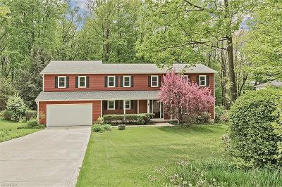 Geauga County Single Family Home For Sale: 8271 Stoney Brook Dr