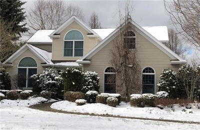 Painesville Township Single Family Home For Sale: 345 Nelmar Dr
