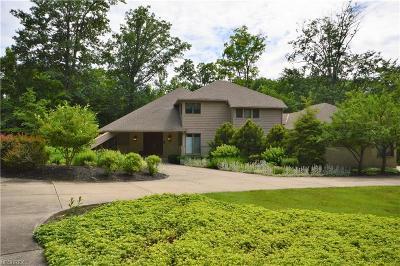 Kirtland Single Family Home For Sale: 9024 Regency Woods Dr