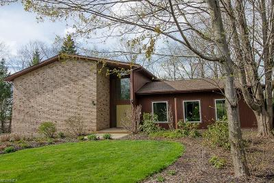 Lake County Single Family Home For Sale: 9351 Canterbury Ln