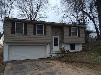 Guernsey County Single Family Home For Sale: 421 Sherman Ave