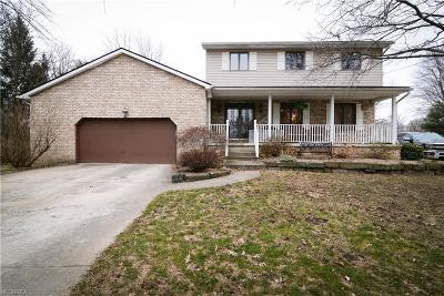 Youngstown Single Family Home For Sale: 111 Robin Hood Dr