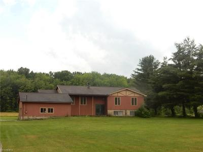 Ashtabula County Single Family Home For Sale: 6268 Summers Rd