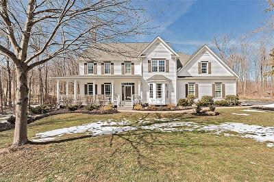 Geauga County Single Family Home For Sale: 17900 Chateau Trl