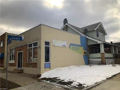 Cleveland Single Family Home For Sale: 3260 West 105th St