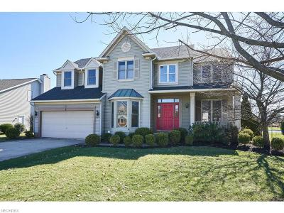 Copley Single Family Home For Sale: 4114 Kingsbury Blvd