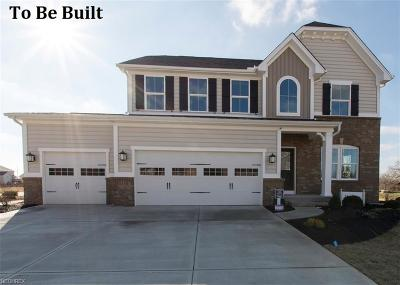 Twinsburg Single Family Home For Sale: 3459 Shady Timber Dr