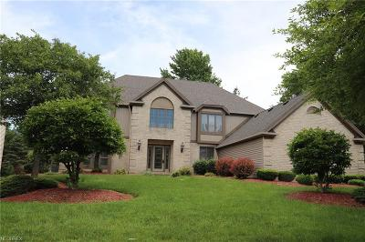 Deerfield Woods Single Family Home For Sale: 19361 Ridgeline Ct