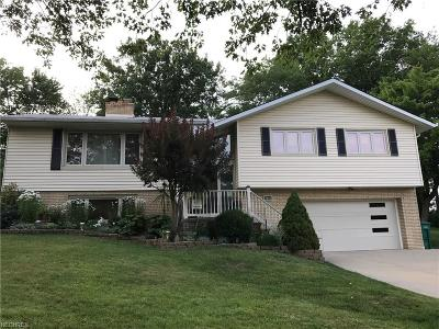 Seven Hills Single Family Home For Sale: 2805 Greenlawn Dr
