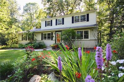 Chesterland Single Family Home For Sale: 12080 Sperry Rd