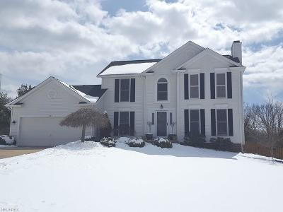 Summit County Single Family Home For Sale: 1664 Chestnut Trail Dr