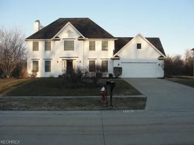Avon Single Family Home For Sale: 2141 Lake Pointe Dr