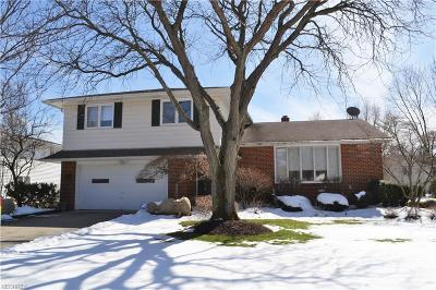 Lyndhurst Single Family Home For Sale: 5384 Meadow Wood Blvd