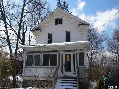 Painesville OH Single Family Home For Sale: $29,900