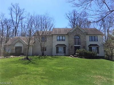 Chagrin Falls Single Family Home For Sale: 105 Champion Ln