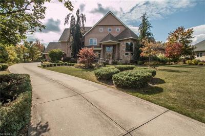 Brecksville Single Family Home For Sale: 6599 Summer Wind Dr