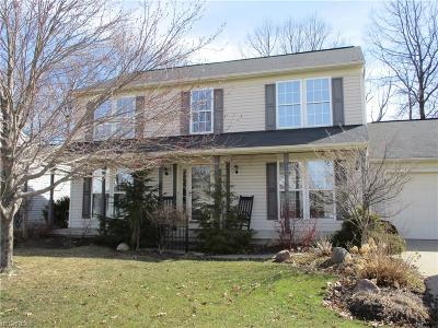 Lorain County Single Family Home For Sale: 4285 Jenee Dr