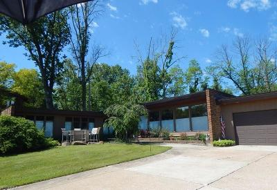 Brecksville Single Family Home For Sale: 9500 Brecksville Rd
