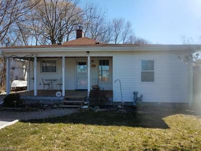 Painesville OH Single Family Home For Sale: $89,000