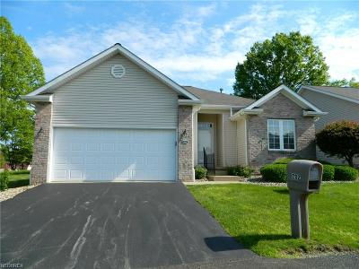 Youngstown Condo/Townhouse For Sale: 125 Fitch Blvd #202