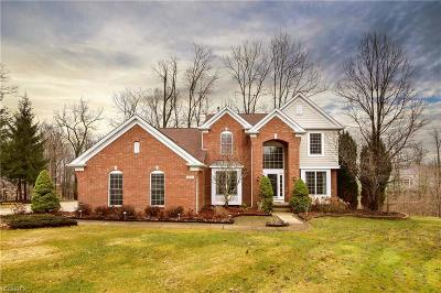Broadview Heights Single Family Home For Sale: 1495 Fireside Trl