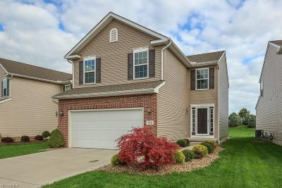 Painesville Township Single Family Home For Sale: 916 Tradewinds Cv