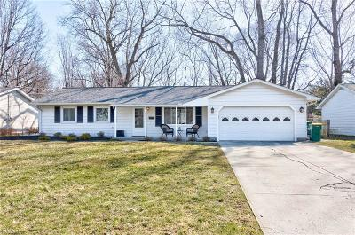 Mentor Single Family Home For Sale: 6293 Cumberland Dr