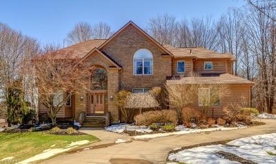 Solon Single Family Home For Sale: 5571 High Point Rd