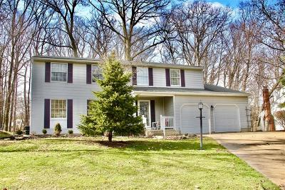 Brecksville Single Family Home For Sale: 10244 Old Orchard Dr