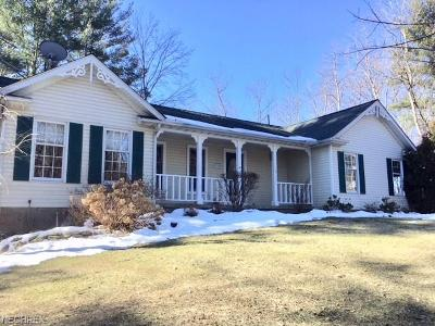 Lake County Single Family Home For Sale: 4970 River Rd