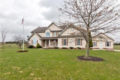 Geauga County Single Family Home For Sale: 16785 Auburn Springs Dr
