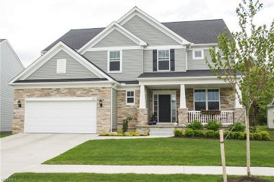 Highland Heights Single Family Home For Sale: 307 East Legend Ct