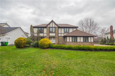 Highland Heights Single Family Home For Sale: 483 Leverett Ln