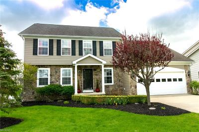 Geauga County Single Family Home For Sale: 113 Fox Pointe Dr