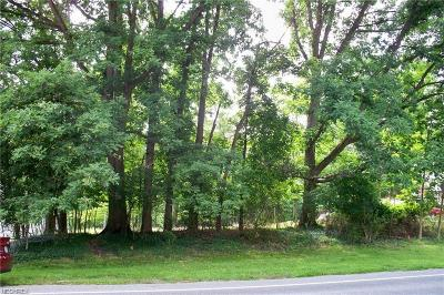 North Royalton Residential Lots & Land For Sale: 13478 State Rd